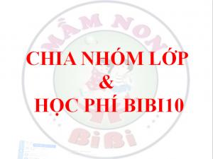 Chia nhóm lớp học – học phí Trường mầm non hệ song ngữ BiBi 10 – Nguyễn Đức Cảnh