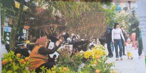"""Thơ """"Đi chợ tết"""" – Lớp Gấu Trúc – Cơ sở BiBi 9"""